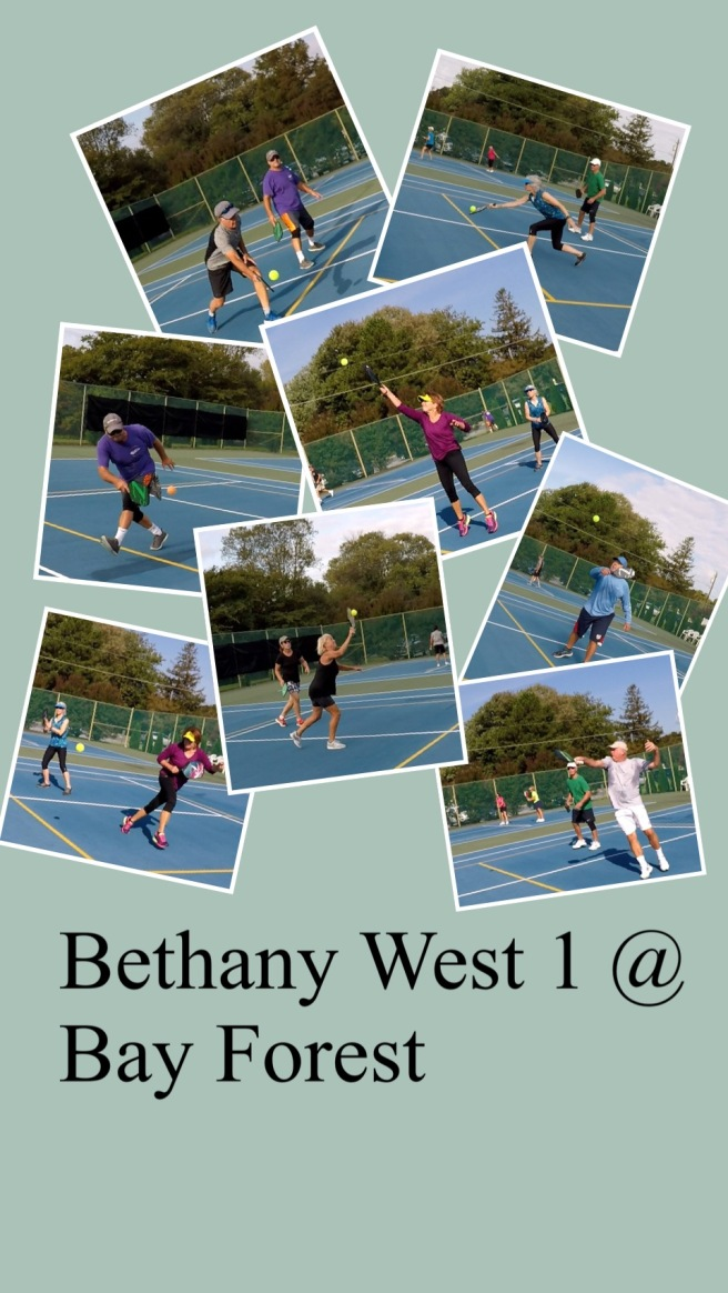 Bethany 1 @ Bay Forest collage 10-2-18