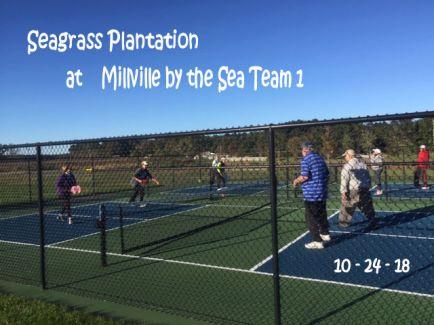 Seagrass Plantation @ MBTS Team 1 10-24-18 pic 4 enhanced